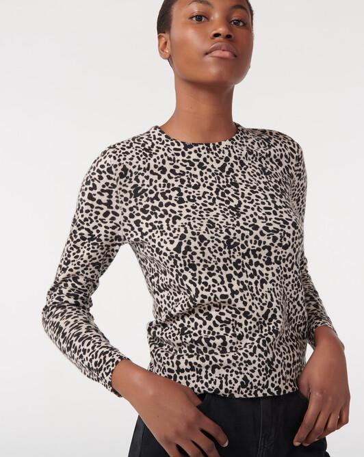 Ras de cou mini leopard - Tourterelle