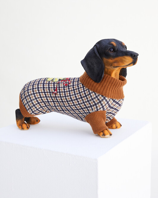 Pull canin imprimé pied-de-poule et jeu - Tabac